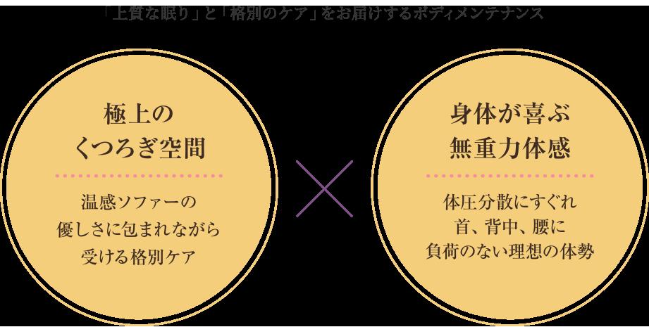 ゼログラビティ × ホルミシス体感